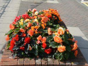 Brick planters 10