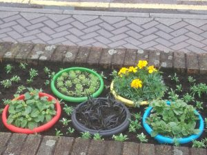 Brick planters 5