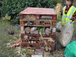 Bug House 7