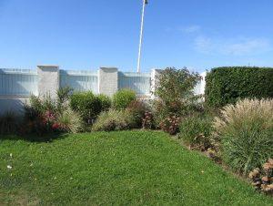 Grasses 6