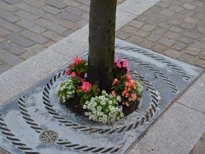 Tree base flowers 1